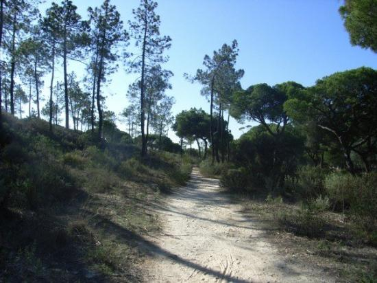 Almancil, Portugal: the nature reserve around the hotel