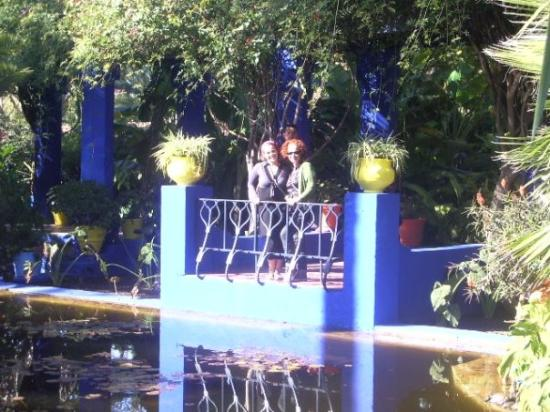 les jardins de majorelle foto van jardin majorelle marrakesh tripadvisor. Black Bedroom Furniture Sets. Home Design Ideas