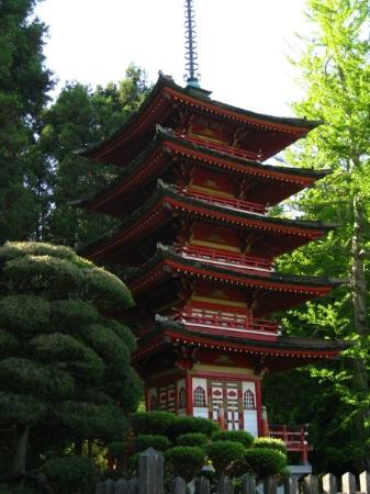 Pagoda In Japanese Tea Garden In Golden Gate Park