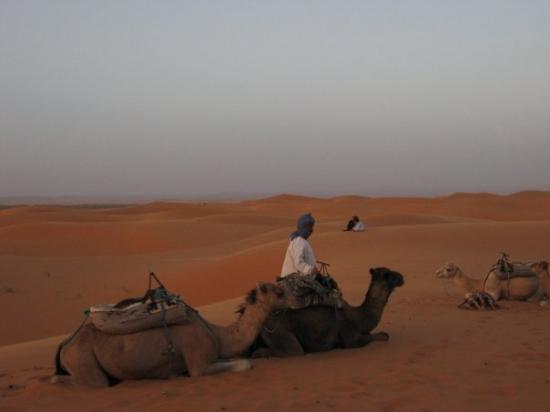 Merzouga, Marokko: Deserto di Marzouga