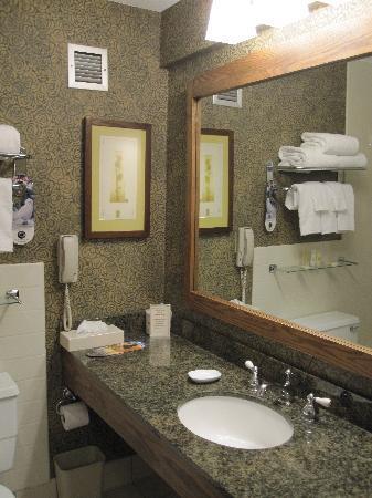 DoubleTree by Hilton Libertyville - Mundelein : Clean bathroom