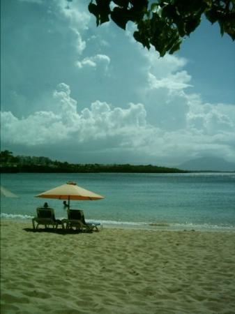 Sosua, République dominicaine : Beach in Sasoua, Dominican Republic