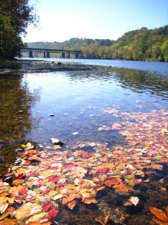 แรดฟอร์ด, เวอร์จิเนีย: New River