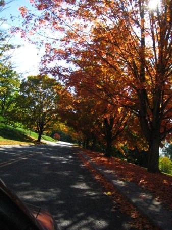 แรดฟอร์ด, เวอร์จิเนีย: drive around town