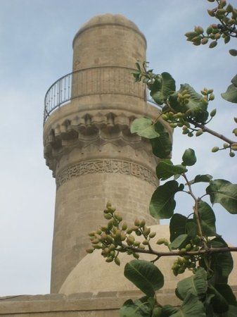 Baku-bild