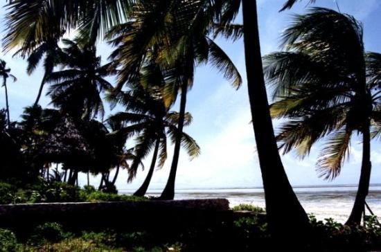 Sunrise Guest House Hotel: Zanzibar- Sunrise Hotel & Reataurant