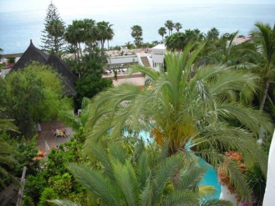 L 39 arrivo al jardin tropical e vista oceano fotograf a de for Jardin tropical tenerife tripadvisor