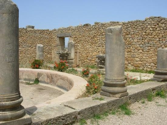 Site archéologique de Volubilis : Volubilis (Maroc)