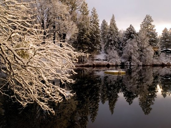 Twain Harte, CA: Early morning snow at Brentwood Lake.