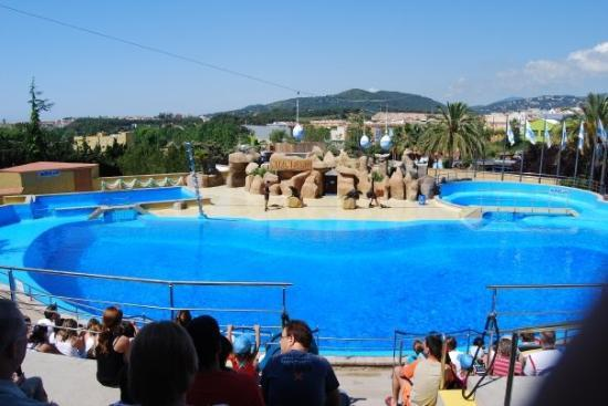 Hotels Near Marineland