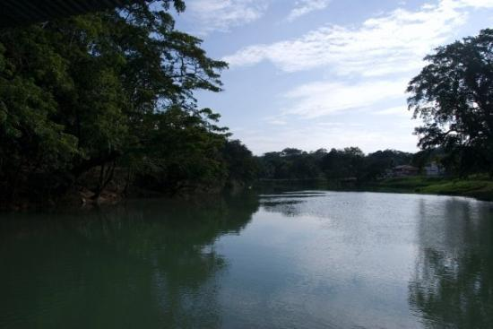Belize Cruise Excursions: You have to cross a river to get to the ruins.  It is a little hike.  It is not too difficult.