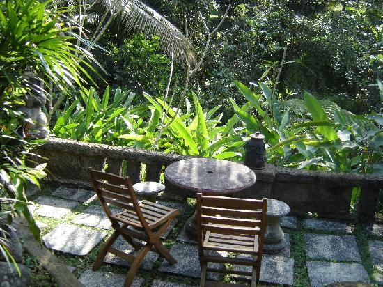 Ubud Sari Health Resort: looking out from our bungalow