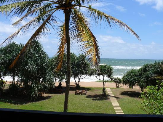 Temple Tree Resort & Spa: Blick vom Zimmer