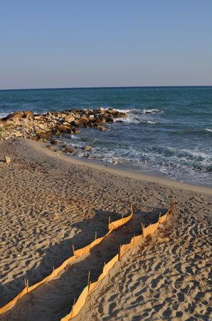 Pigianos Kampos, Grecja: la plage
