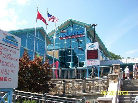 Bales Motel: aquarium just down the hill