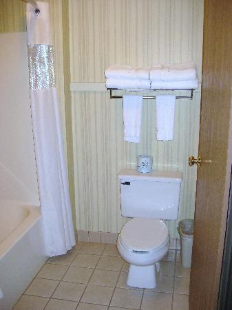 Miles City Hotel & Suites: A wonderful view of the toilet