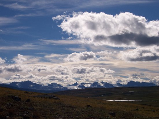 Vasterbotten County, Sweden: Moors of the Kungsleden