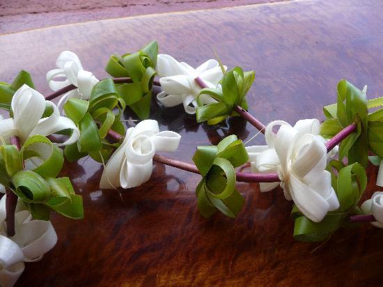 Cabanas Christophe: accueil fleuri