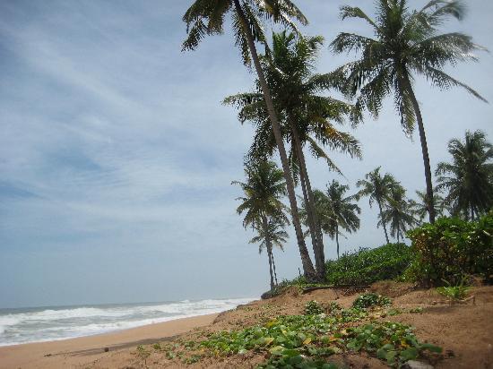 SANKAREST Villa: Kosgoda Beach