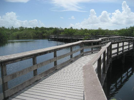 Everglades National Park, ฟลอริด้า: Anhinga Trail,  Ernest F. Coe Visitor Center