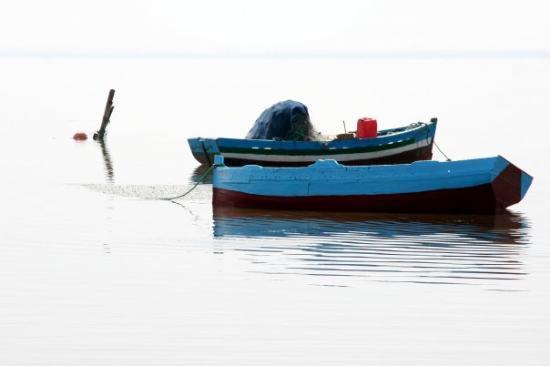 Djerba Explore: Djerba -Tunisie