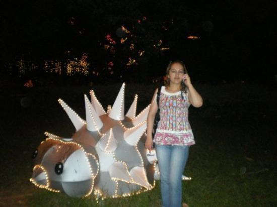 Villavicencio Photo