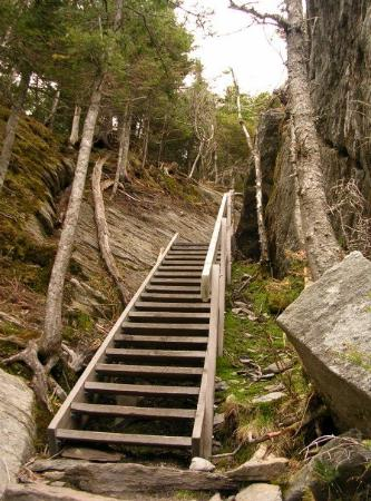 Mont Sutton: The easy part of the hike