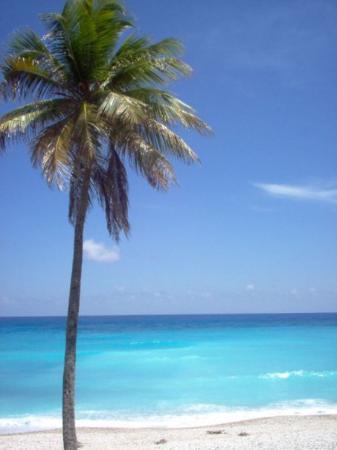Barahona, Dominican Republic: Playa Paraiso - Rep. Dominicana