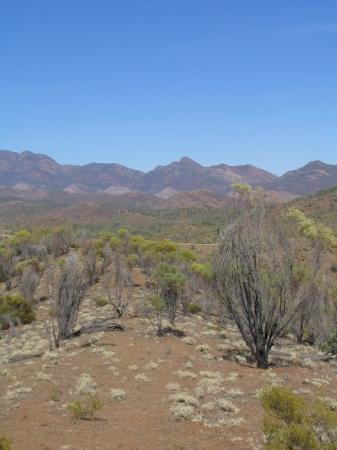 Wilpena, Australia: Flinders Ranges
