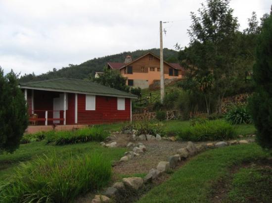 Constanza Foto