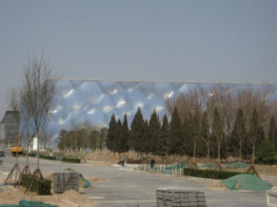 Beijing Aquarium (Beijing Haiyangguan): olympics - aquatic stadium