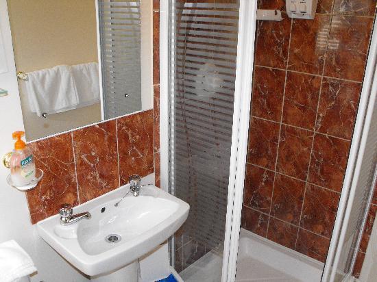 Abacus Guest House : Roomy Bathroom