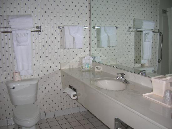 Comfort Suites Madison West: Vanity area