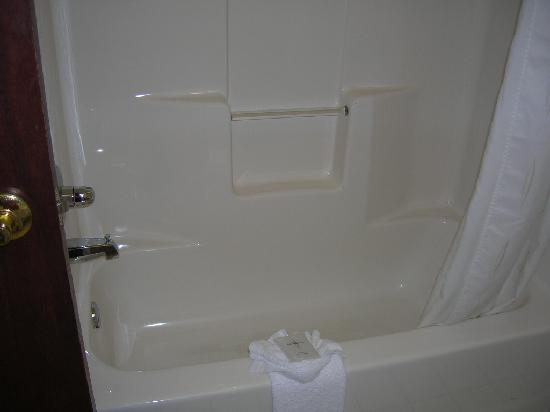 Comfort Suites Madison West: Tub