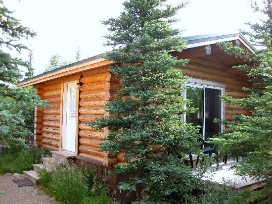 Park's Edge Log Cabins: Our cabin and porch