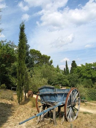 Zdjęcie Avignon