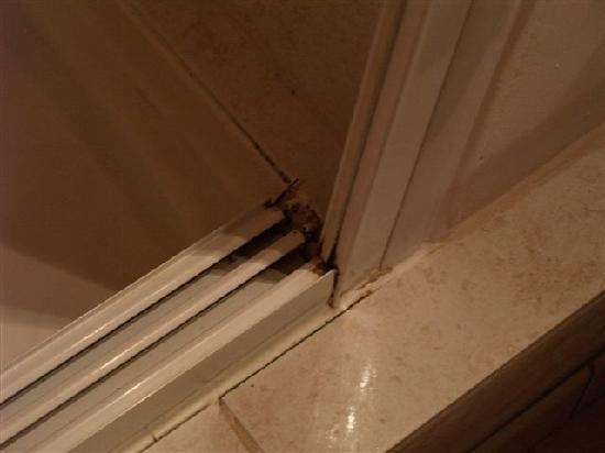Hotel Constantin : la doccia...