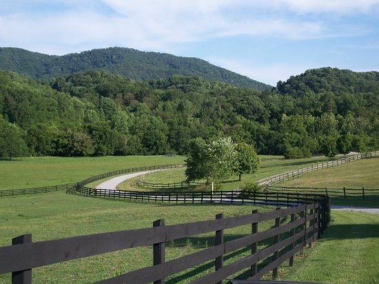 Walland, TN: Country Lane in the summer