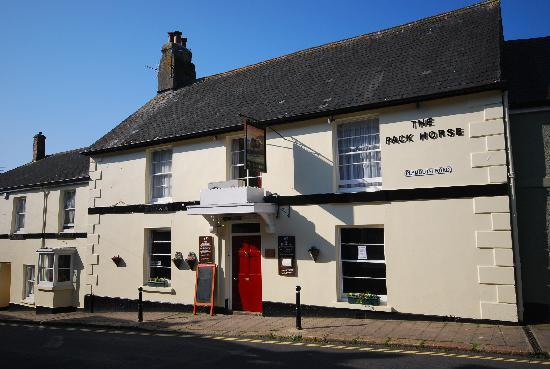 The Pack Horse: Pack Horse Front View