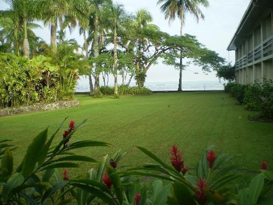 Holiday Inn Suva: Garden outside our rooms