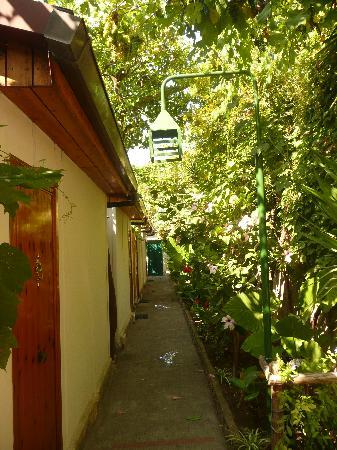 Hotel Continental: The walkway to our cabin room, Continental Hotel