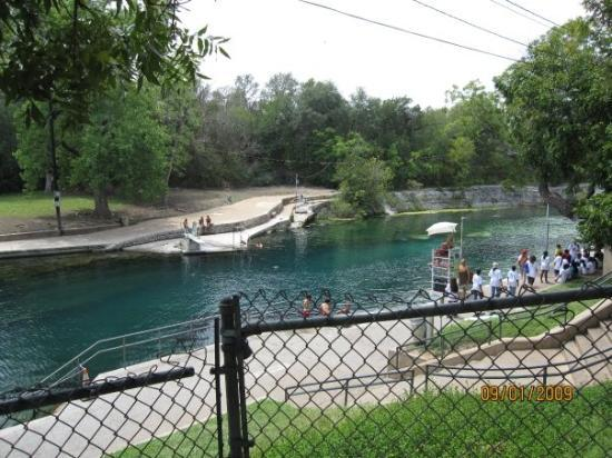 Zilker Botanical Garden: This is part of a long Spring called Barton Spring. In a park called Zilker Park. The spring is