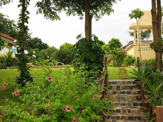 زانادو 2008: Gardens