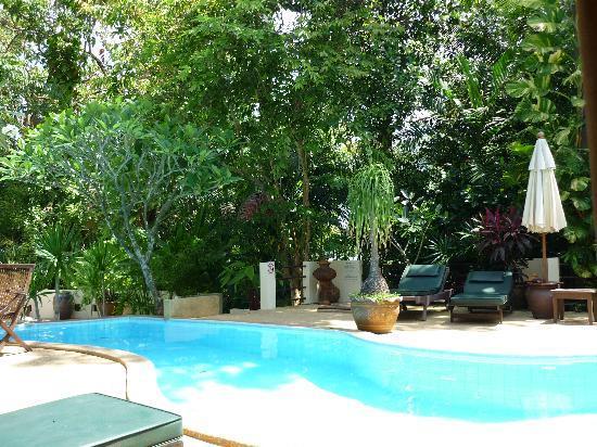 ร็อคกี้ บูติค รีสอร์ท: The Quiet Pool - blissful. No kids!
