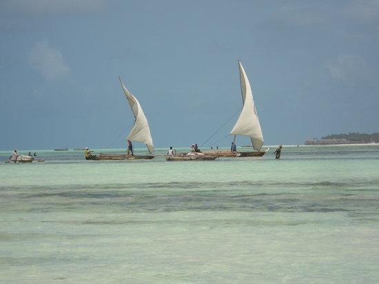 Fairmont Zanzibar Diving