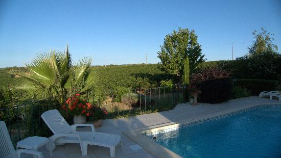 Margon, Frankrijk: The view to the front over the fields of grape vines.