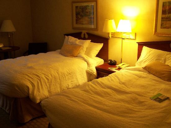 Hampton Inn & Suites Asheville-I-26: room