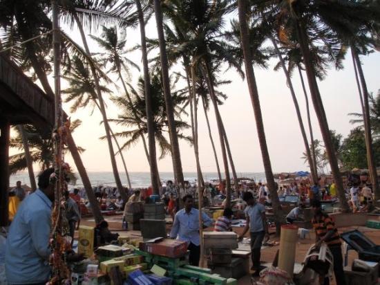 Anjuna Beach Hotels Tripadvisor