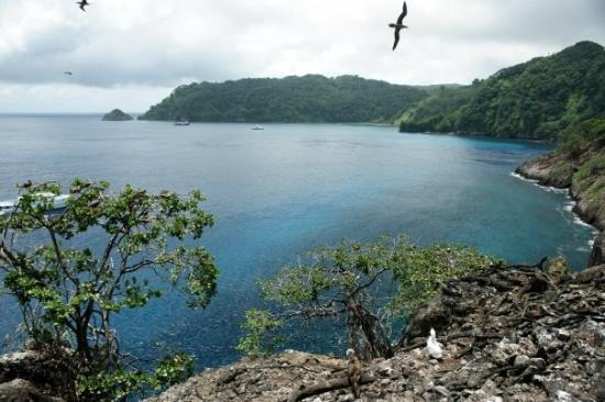 Isla del Coco, Costa Rica: Coco´s Island
