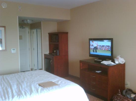 Hilton Garden Inn Lake Forest Mettawa: Pic 1